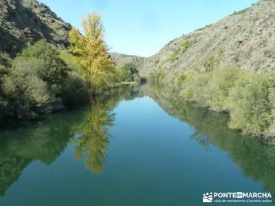 Presa de la Parra - Atazar - Meandros Río Lozoya - Pontón de la Oliva - Senda del Genaro;senderism